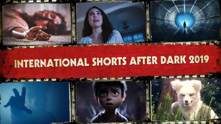International Shorts After Dark