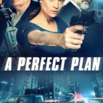 """Poster for the movie """"A Perfect Plan"""""""