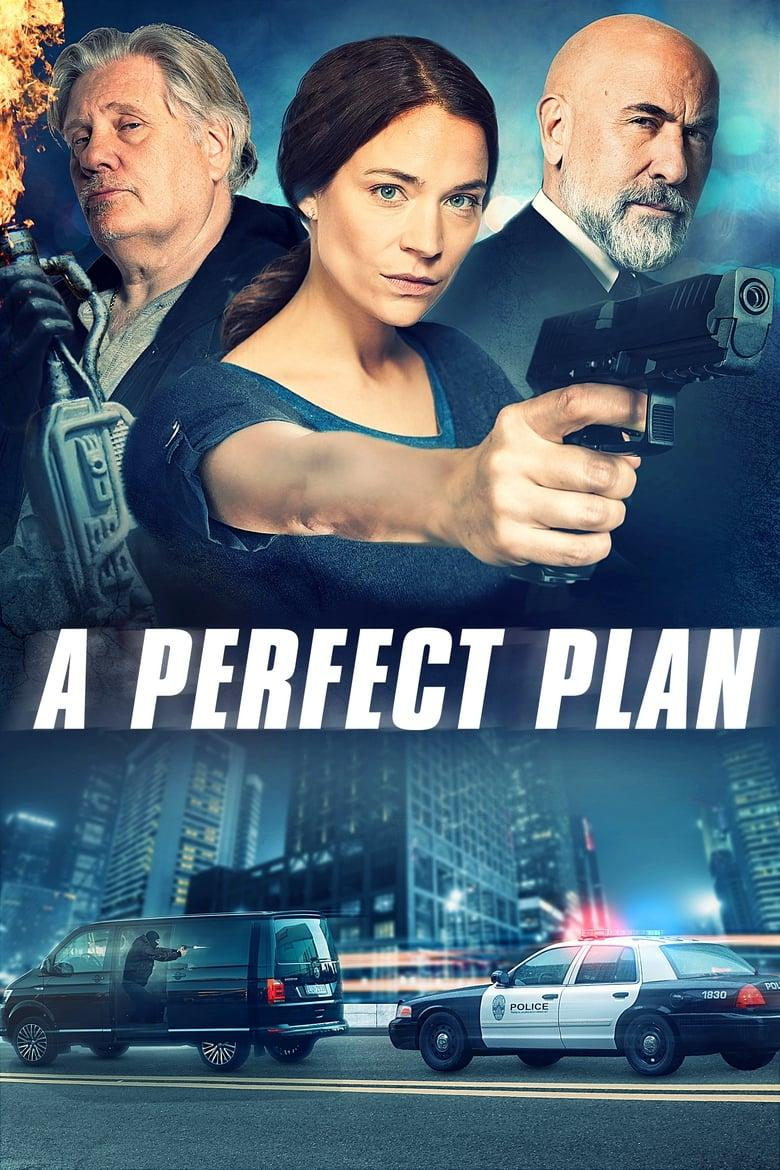 "Poster for the movie ""A Perfect Plan"""